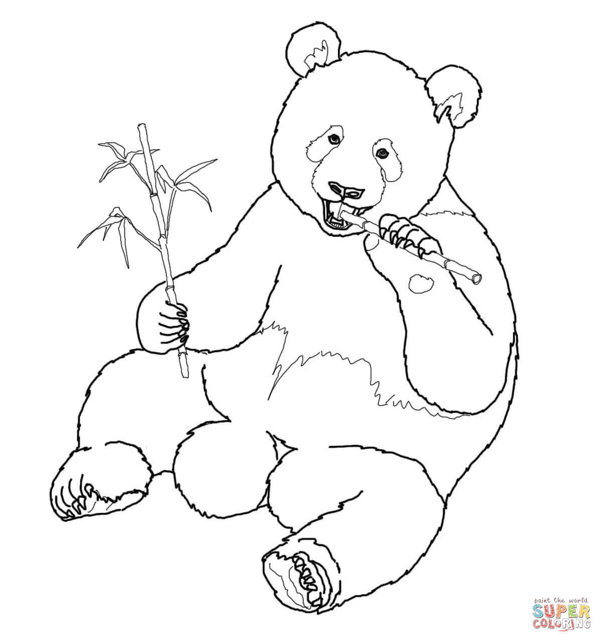 Bamboo Coloring Page Coloring
