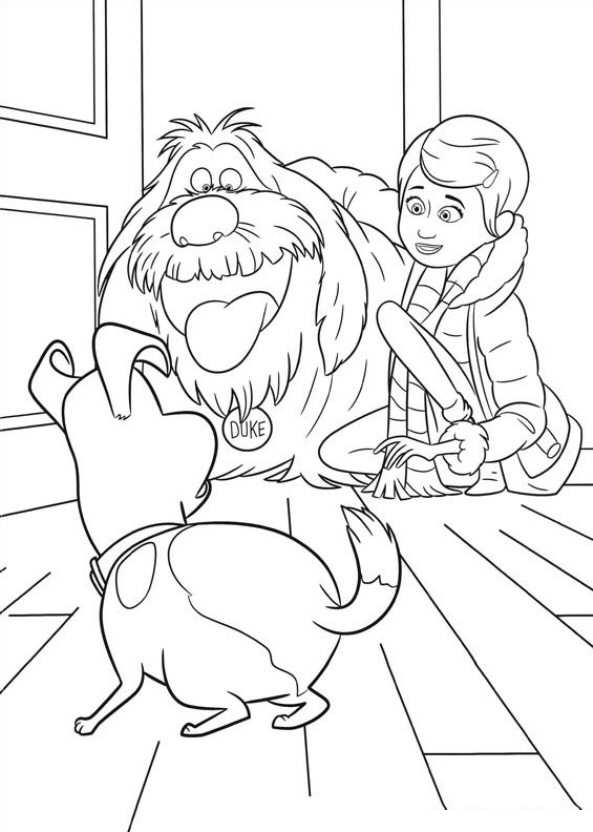 The secret life of pets coloring page coloring home for Secret life of pets printable coloring pages