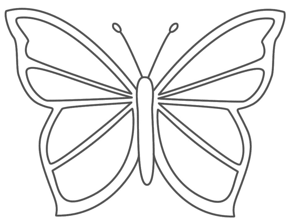 butterfly coloring page beautiful coloring pages