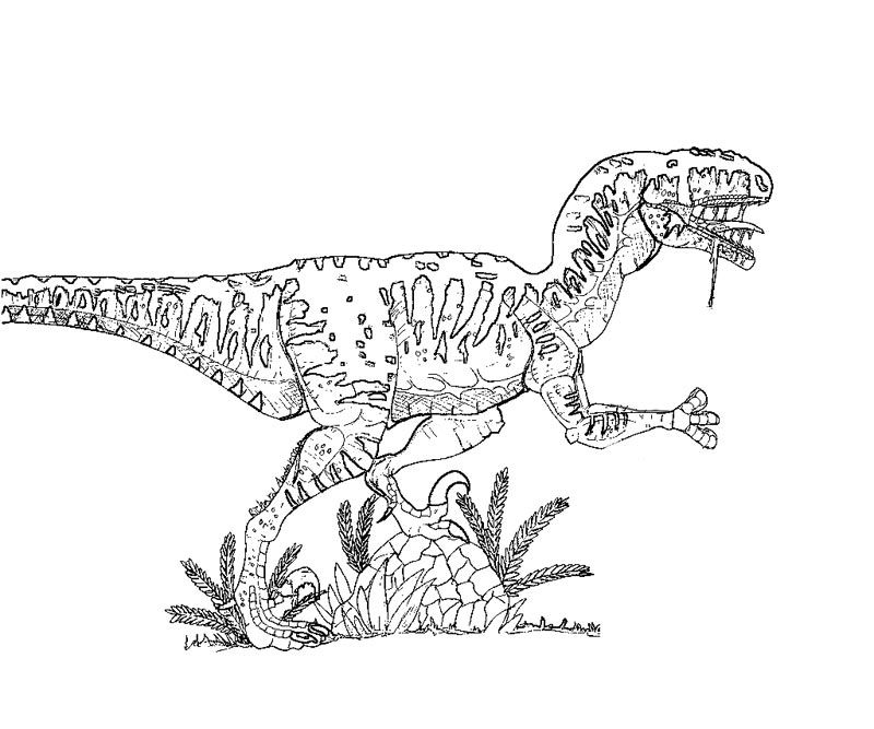 9 Pics of Jurassic Park Velociraptor Coloring Pages - Velociraptor ...