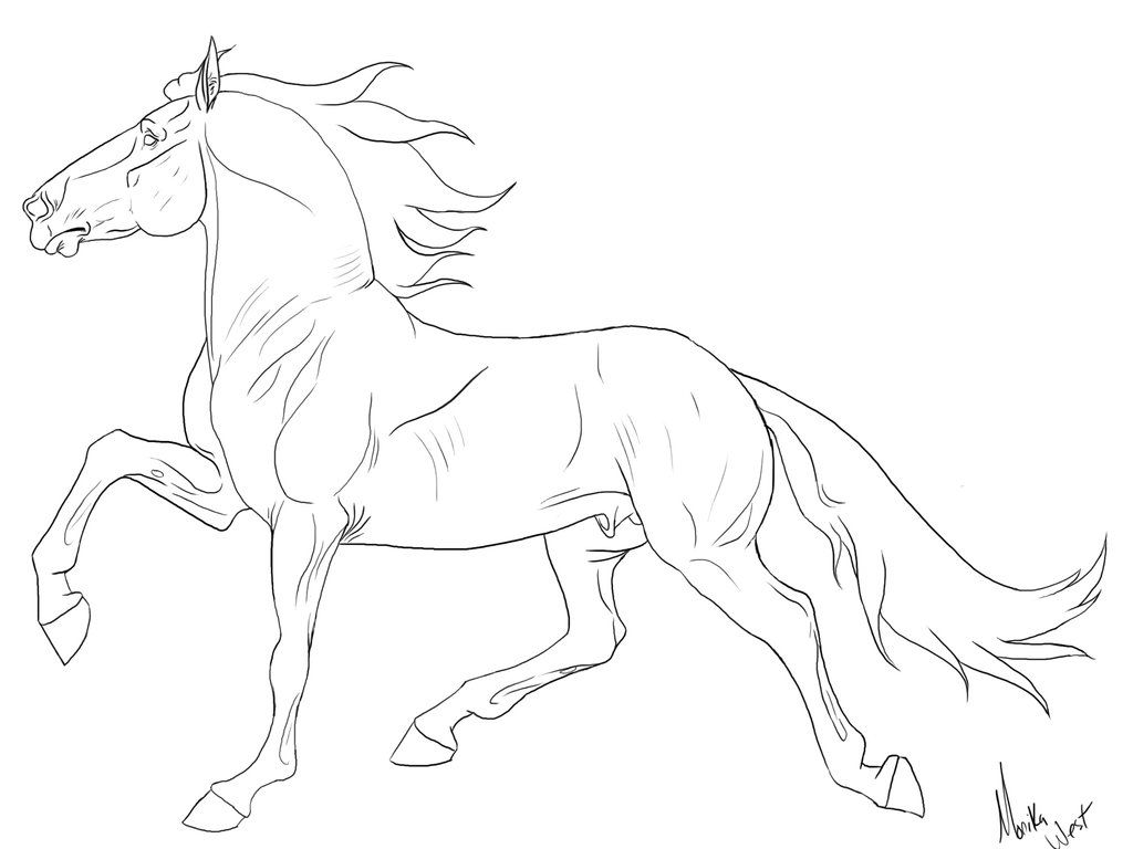 breyer horse coloring pages printable - photo#2