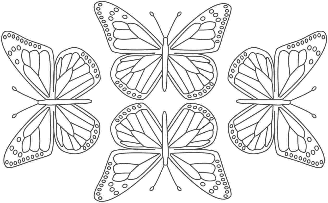 coloring pages butterflies - photo#31