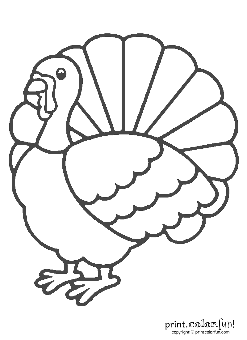 Coloring Page Of A Turkey For Preschool - Coloring Home