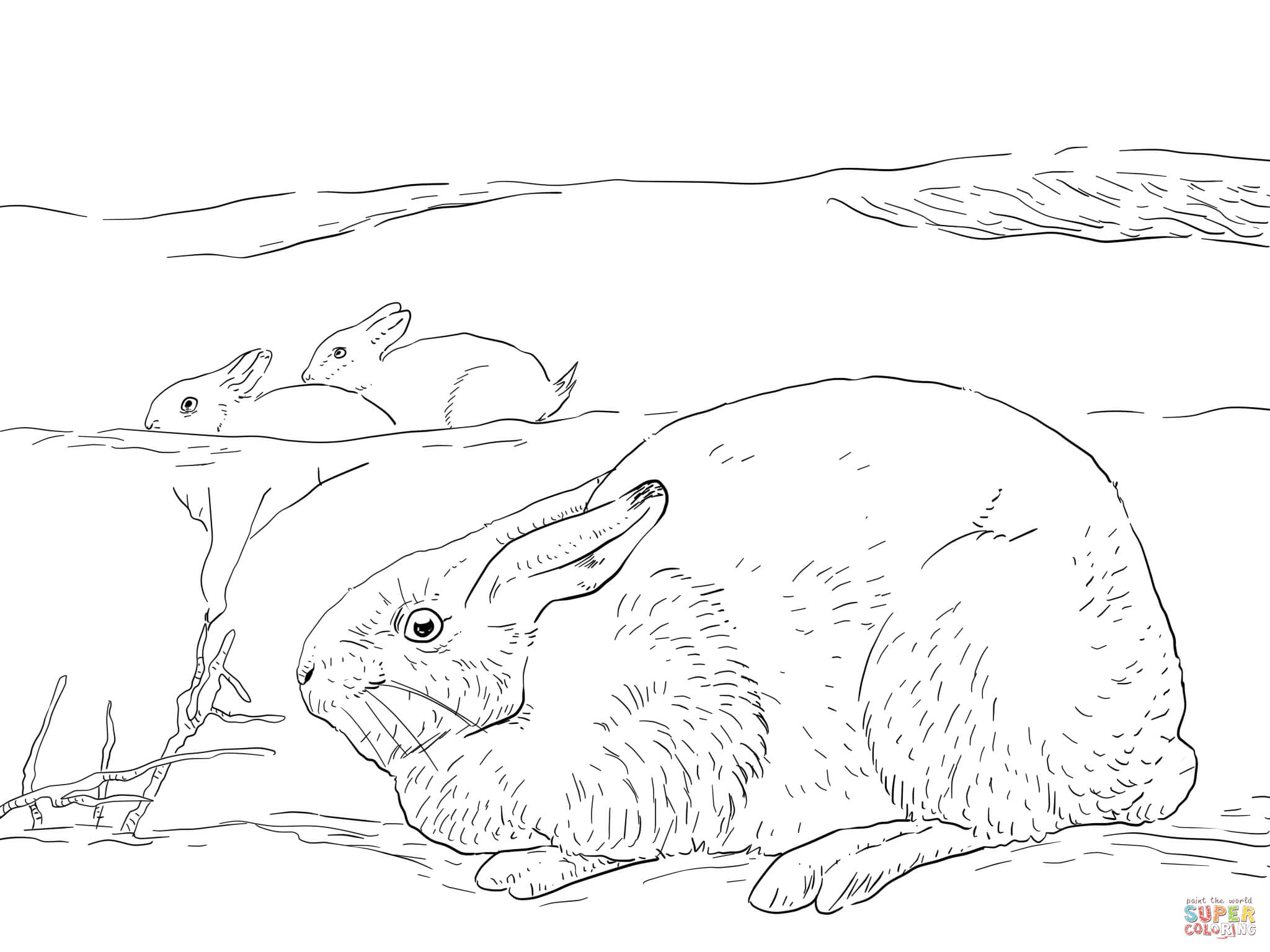 Free Biome Coloring Pages - Coloring Home