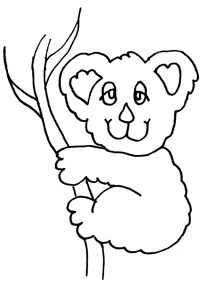 Koala Colouring Pages- PC Based Colouring Software, thousands of