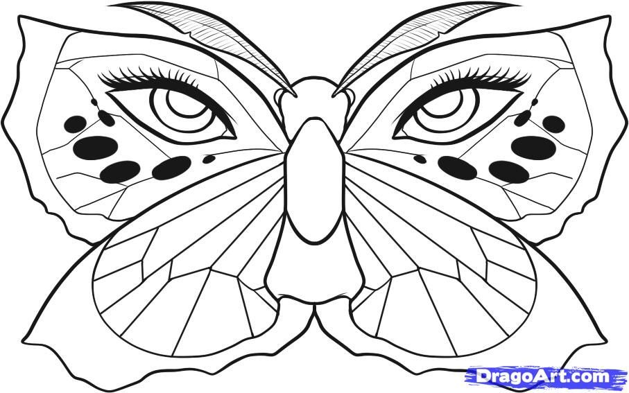 monarch butterfly sketch gallery
