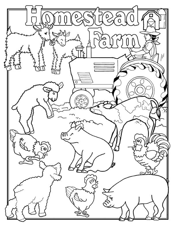 farm coloring pages for preschoolers - photo#12