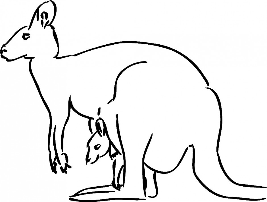 Free Australian Animals Coloring Pages Hagio Graphic 246525