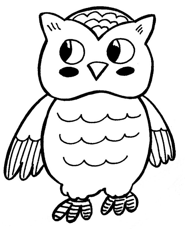 Owl Drawing Color Owl Coloring Pages For Kids