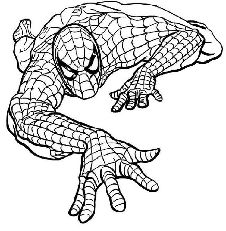 Spiderman Coloring Game