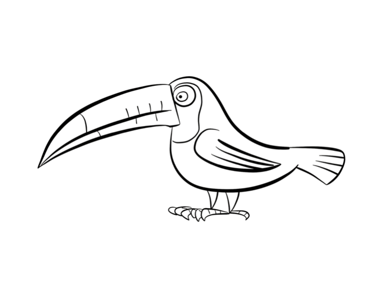 Toucan Coloring Page | Coloring Pages - Coloring Home