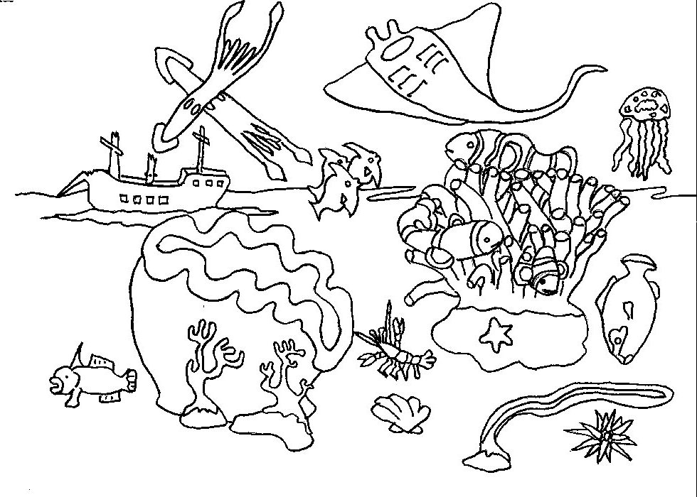 Coral coloring pages az coloring pages for Coral coloring page