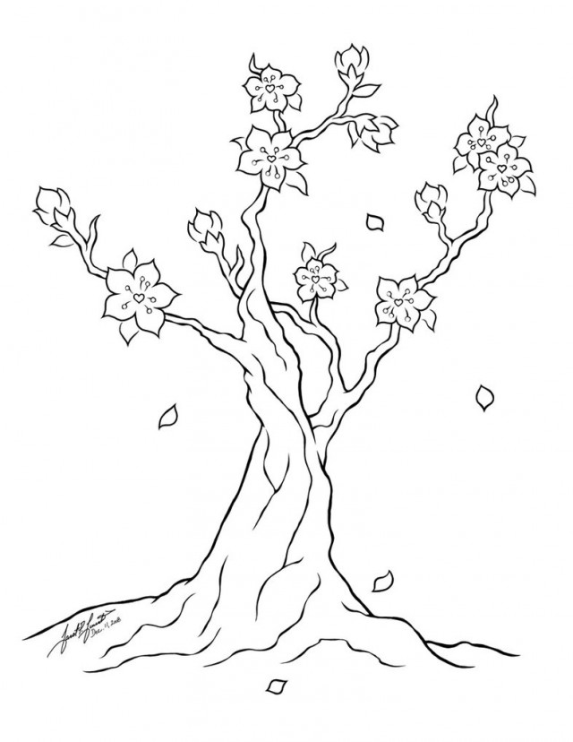 how to draw a chinese tree