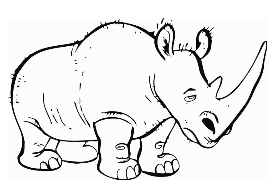 Rhinoceros Coloring Page Az Coloring Pages Rhinoceros Coloring Page