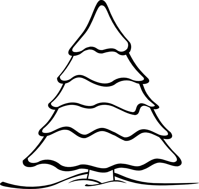 evergreen tree coloring pages - photo#5