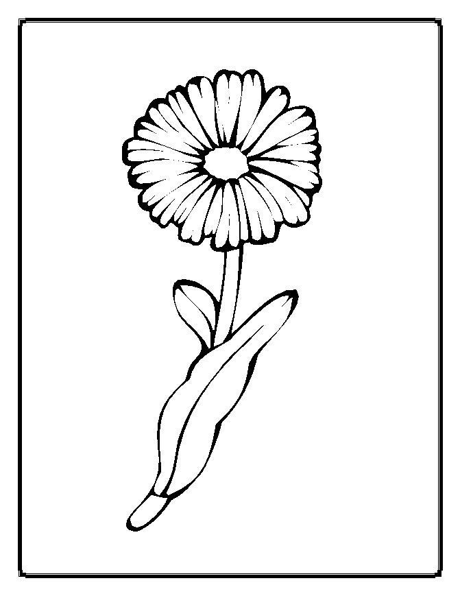 free printable daisy coloring pages - photo#24