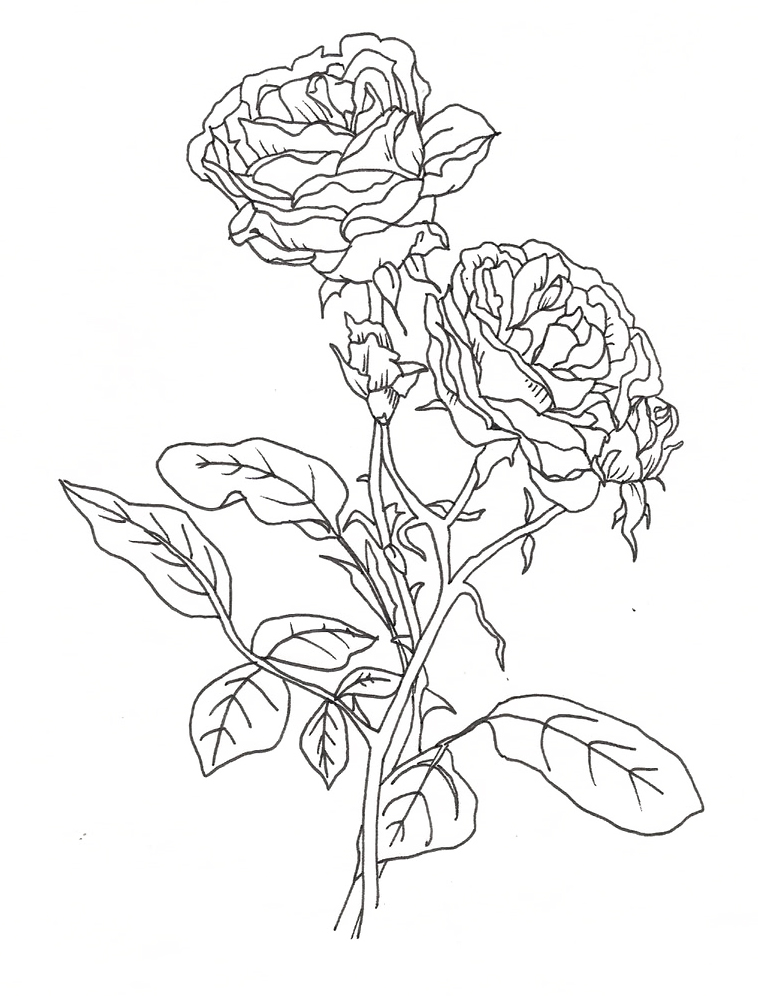 pretty flowers coloring pages - photo#21