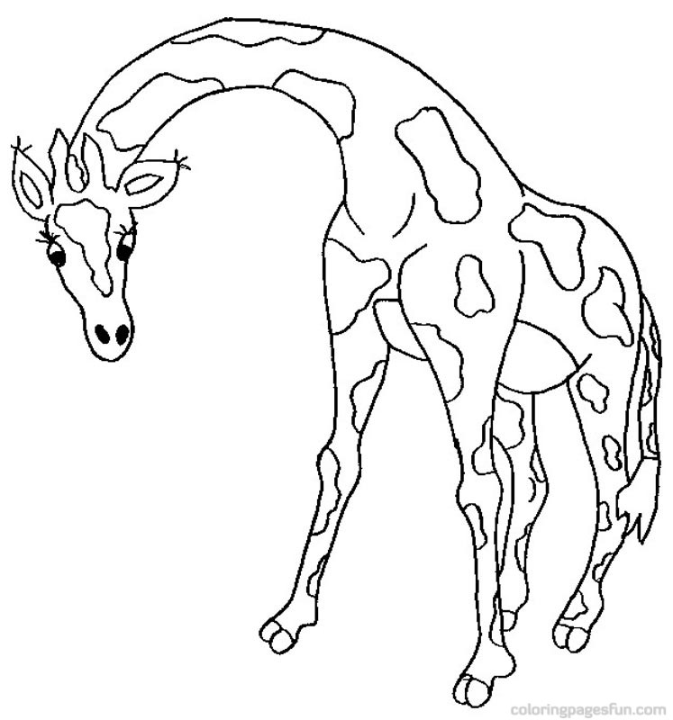 safari coloring page - giraffe coloring pages 21 free printable coloring pages