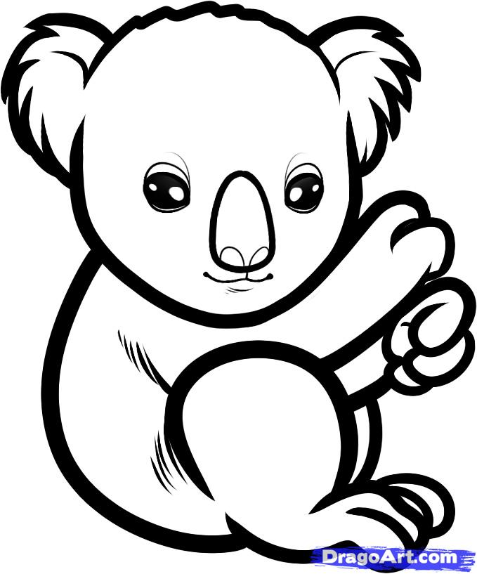 Line Drawings Of Rainforest Animals : Koala outline az coloring pages
