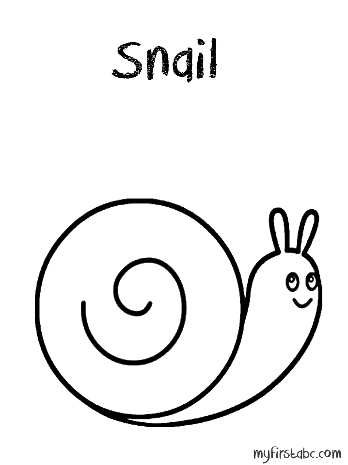 Moon Snail Sea Shell Coloring Page