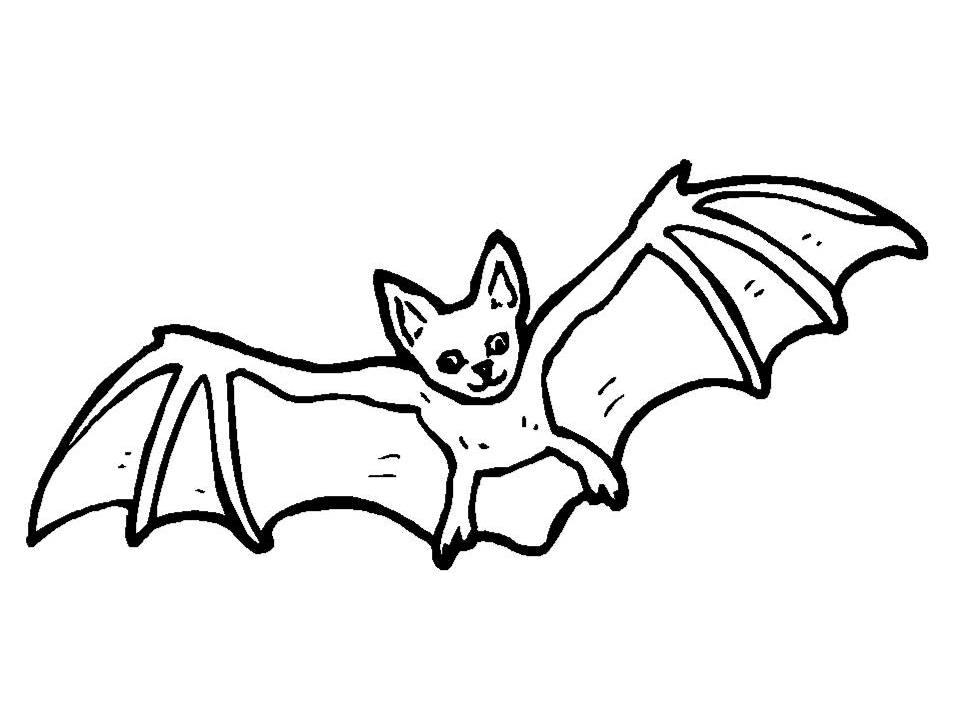 Bat pictures to colour az coloring pages - Murcielago para imprimir ...