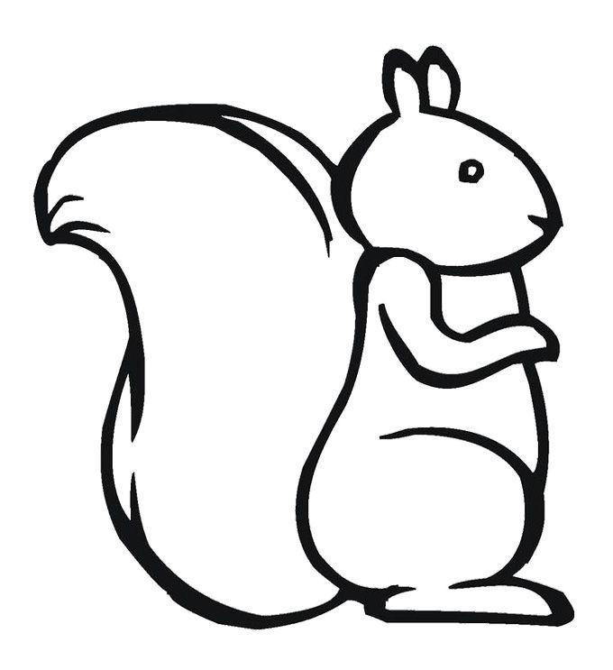 Squirrel coloring page for kids pattern design ideas