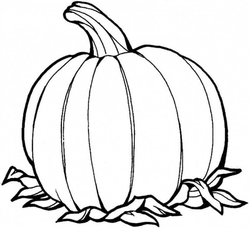 Blank Pumpkin Coloring Pages Home