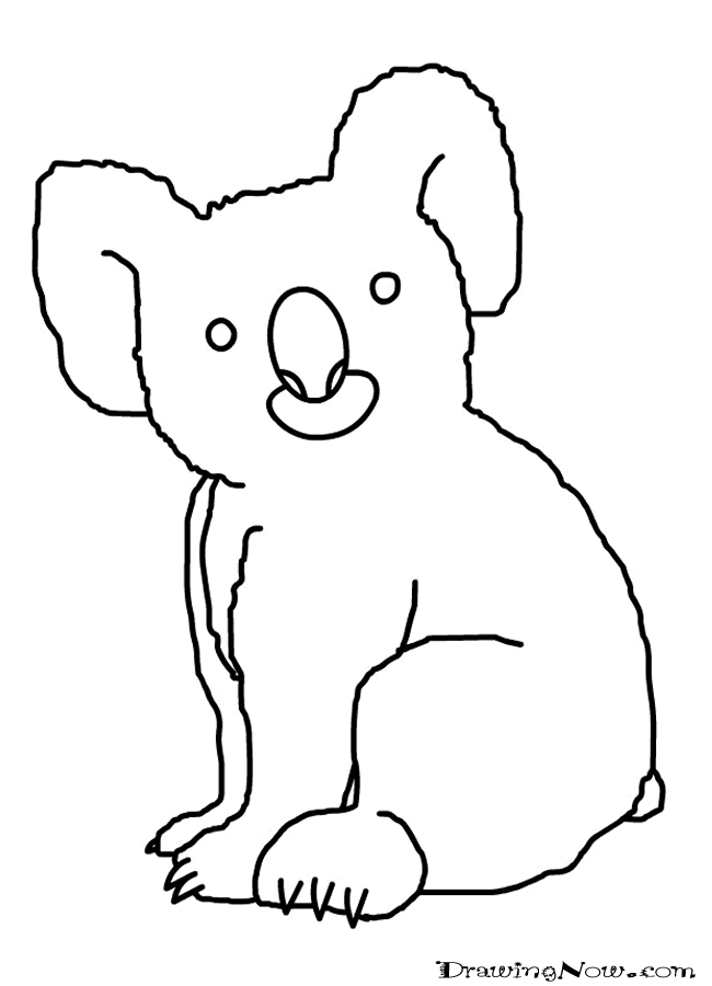 How To Draw Koala Bears Drawing Tutorials Drawing How To