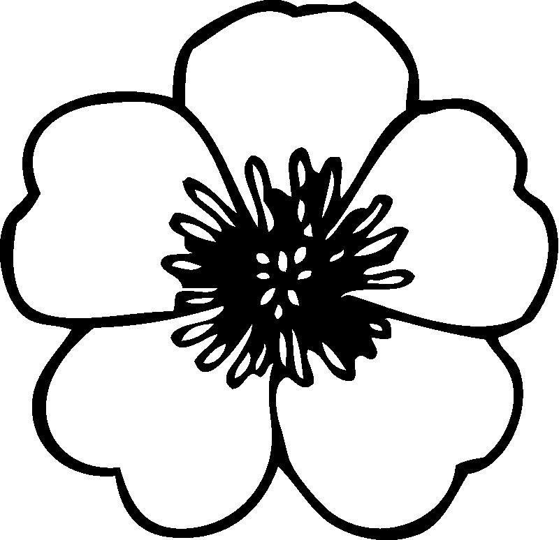 Coloring Pages Preschool Flowers : Flower templates for preschool az coloring pages