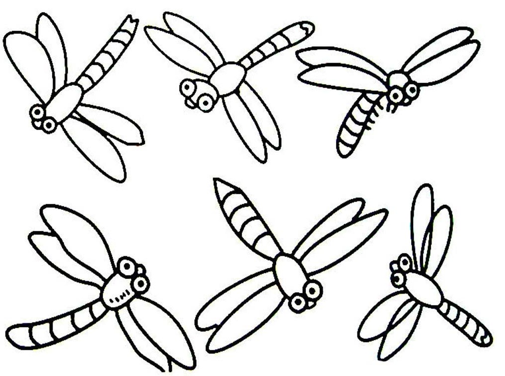 Dragonfly Coloring Pages Kids