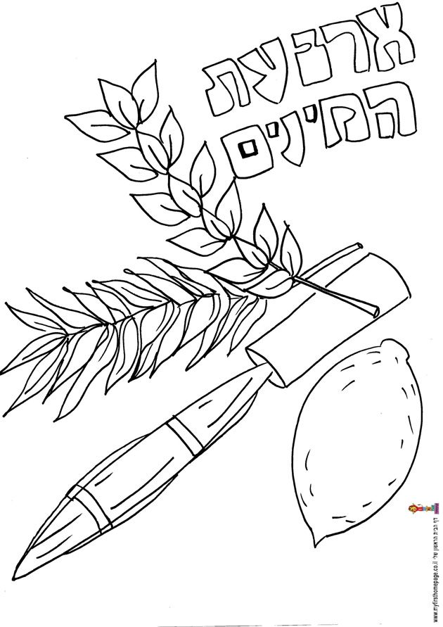 Sukkot Colouring Pages (page 2)