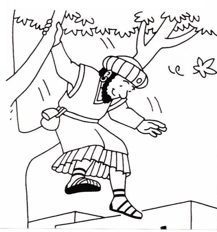 Bible Story Col... Zacchaeus Bible Story