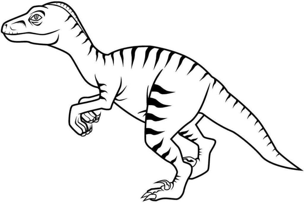 dinosaur coloring pages velociraptor pictures | Velociraptor Coloring Page - Coloring Home