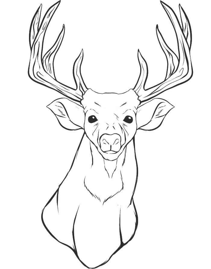 reindeer coloring pages head - photo#32
