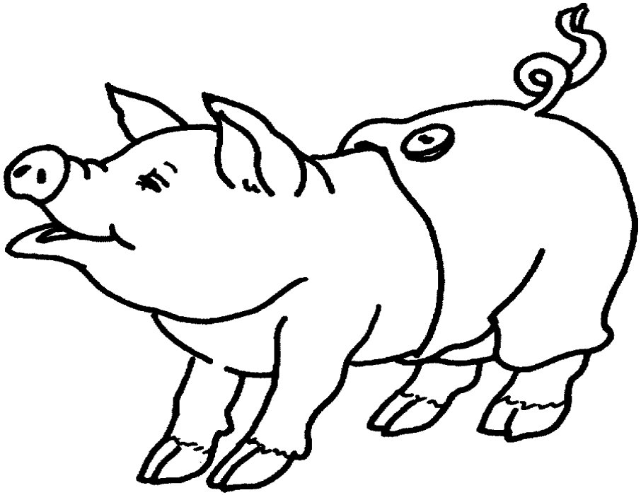 Flying Pig Coloring Pages Pig Coloring Page Free