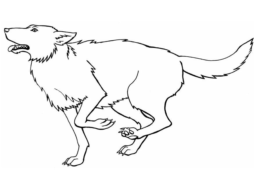 baby wolf coloring pages - Peter Wolf Coloring Pages