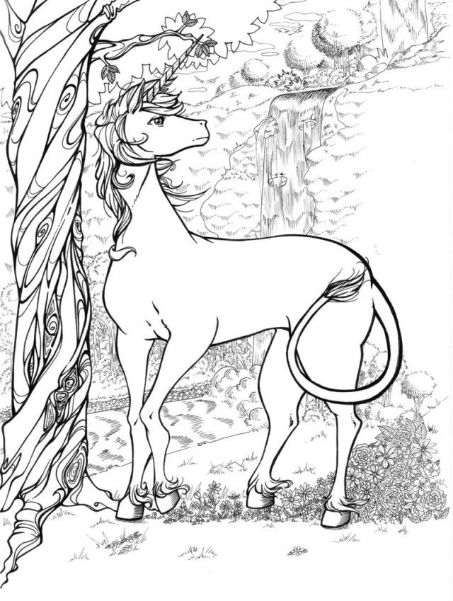 Unicorn Coloring Pages Pictures Fantasy Unicorns Tattoo 221929