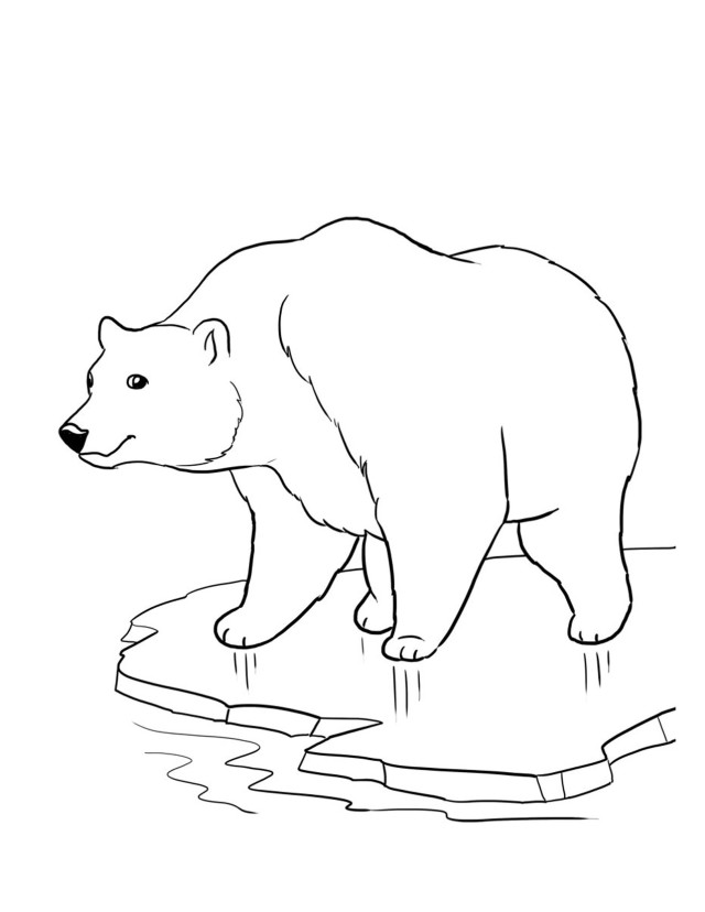 endangered animal coloring pages free - photo#2