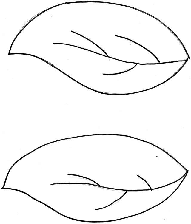 large coloring pages of leaves - photo#8