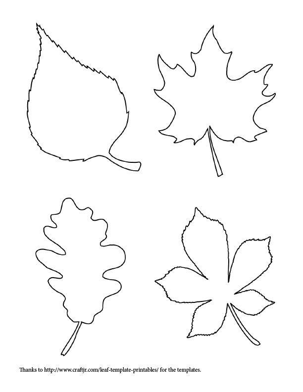 free fall leaf templat...