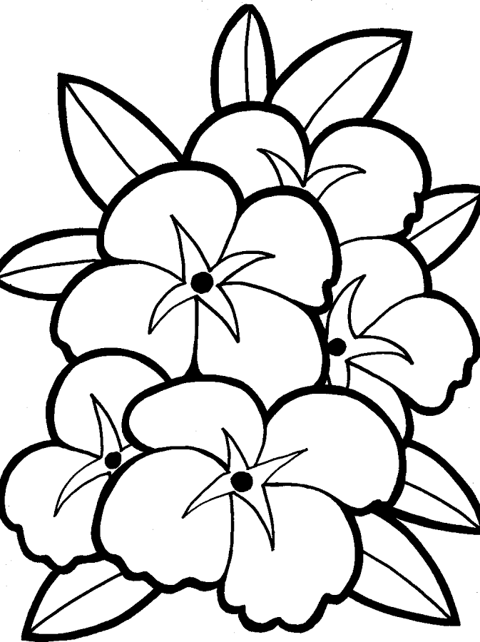 flowers coloring android apps on google play az