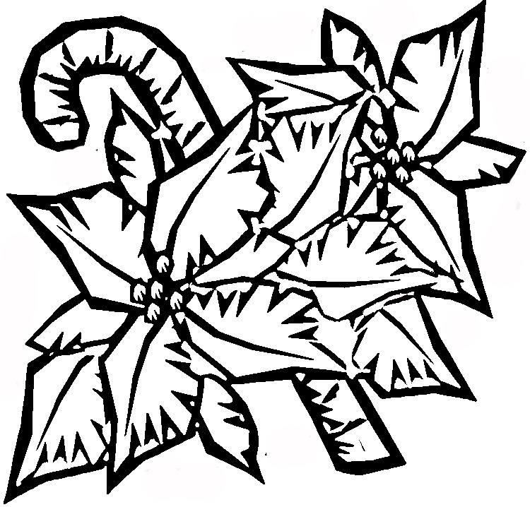 pointsettas coloring pages - photo#35