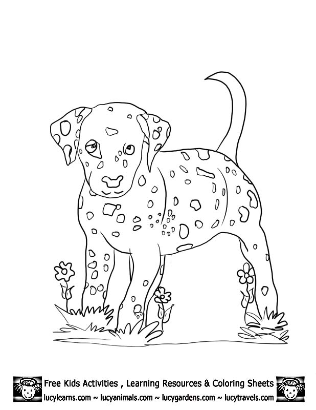 dalmation coloring book pages - photo#30