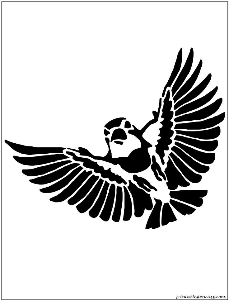 flying bird template printable - bird stencil printable coloring home