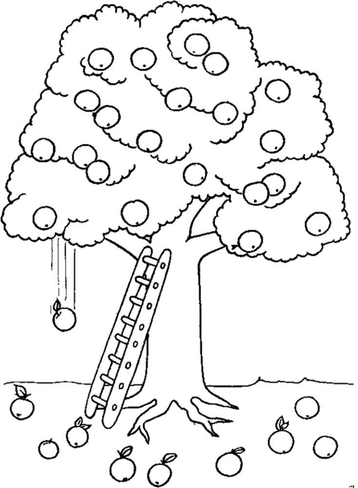 Apple Tree And Ladder Coloring For Kids Tree Coloring Pages