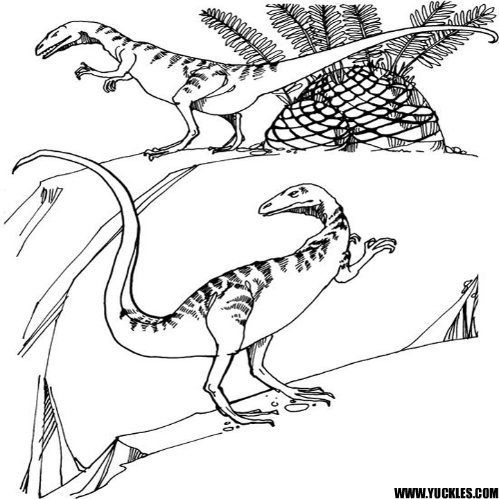 allosaurus coloring pages - photo#37
