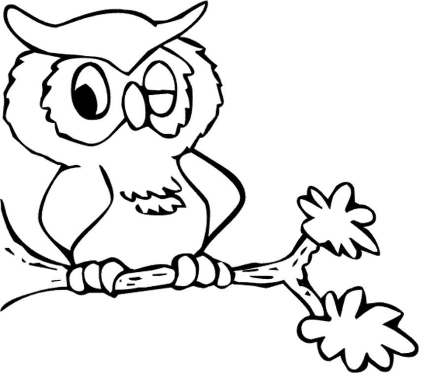 Owl Coloring Pages For Kids Book