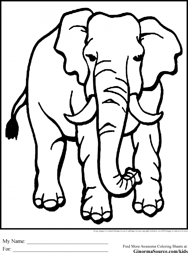 simple jungle animal coloring pages - photo#2