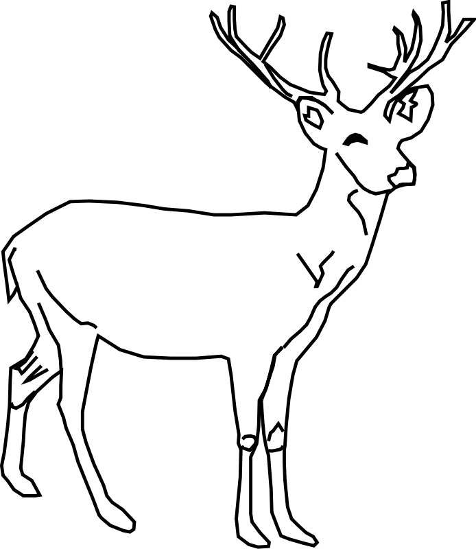 white tailed deer coloring pages - photo#18