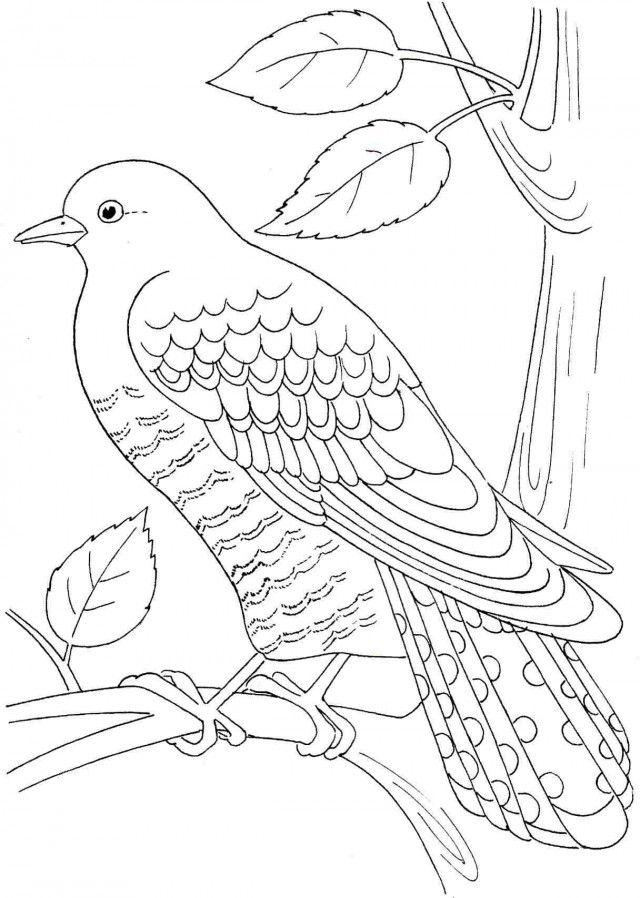 Bakugan coloring pages free az coloring pages for Free bakugan coloring pages